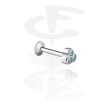 Internally Threaded Micro Labret met Jeweled Steel Cast Attach